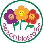 Peachblossoms National Plus School